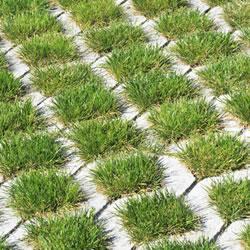 Oprit in grasdallen aanleggen beton grasdallen en kunststof oprit - Doen redelijk oprit grind ...